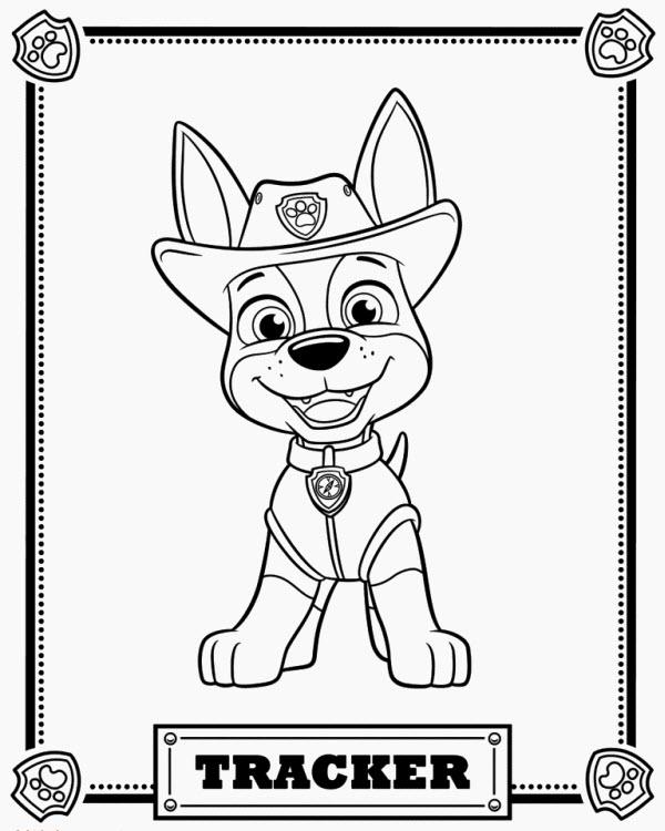 щенячий патруль как зовут щенков имена с фото и описаниями